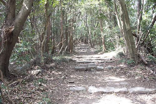 石岳登山道