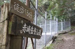 赤崎岳登山道